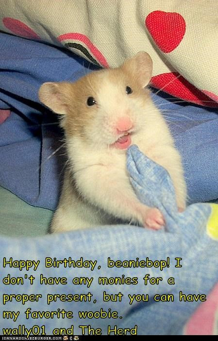 Happy Birthday, beaniebop! I don't have any monies for a proper present, but you can have my favorite woobie.                    wally01 and The Herd