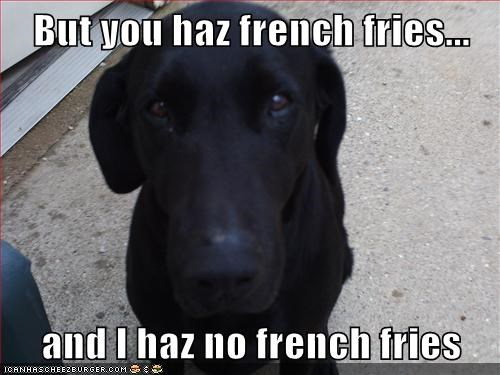 But you haz french fries...  and I haz no french fries