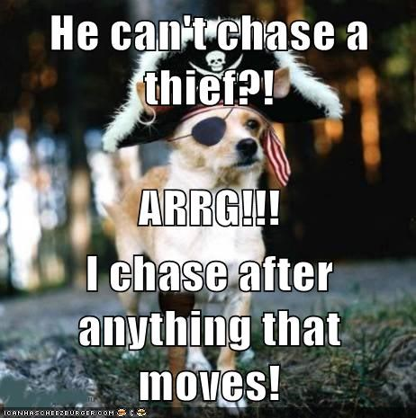 He can't chase a thief?! ARRG!!! I chase after anything that moves!