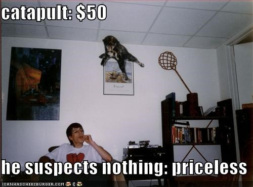 catapult: $50  he suspects nothing: priceless