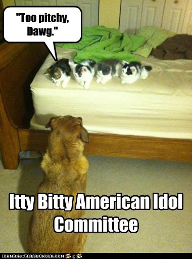 "Lolcats: ""Too pitchy, Dawg."""