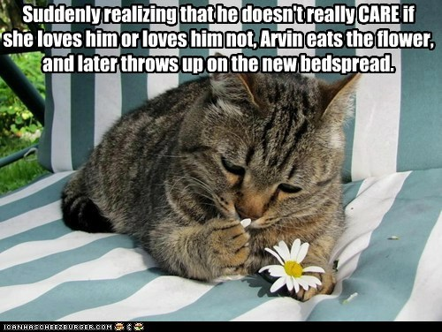 Suddenly realizing that he doesn't really CARE if she loves him or loves him not, Arvin eats the flower, and later throws up on the new bedspread.