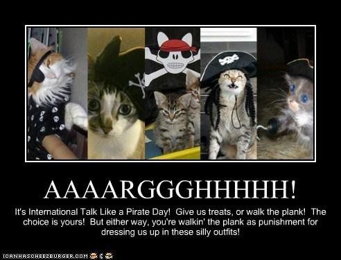 Cats,costume,holidays,international talk like a pirate day,pirates,polls,talk like a pirate day