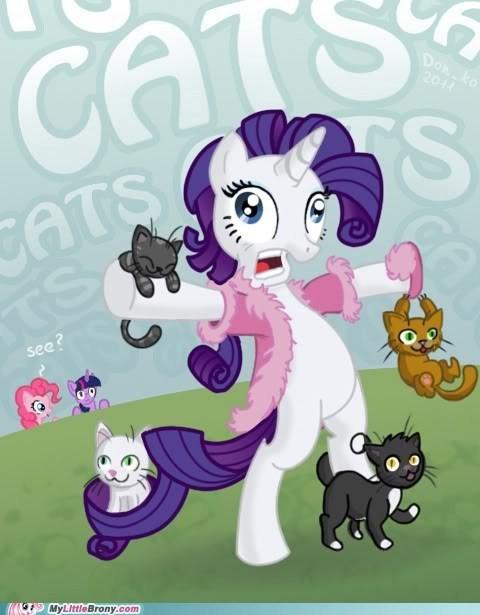 Cat Pony