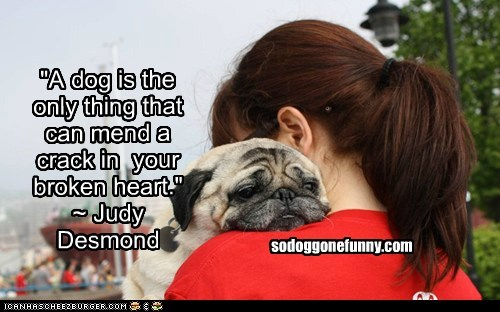 """A dog is the only thing that can mend a crack in  your broken heart."" ~ Judy Desmond"