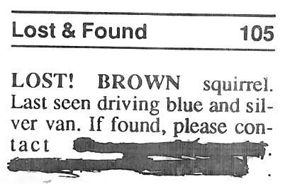 lost,news,Probably bad News,runaway,squirrel