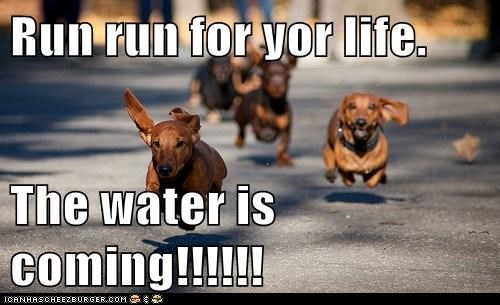 Run run for yor life.  The water is coming!!!!!!