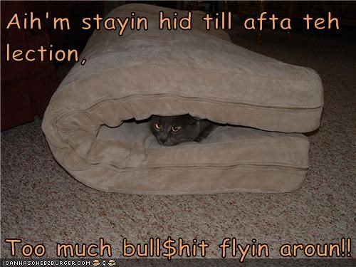 Aih'm stayin hid till afta teh lection,  Too much bull$hit flyin aroun!!