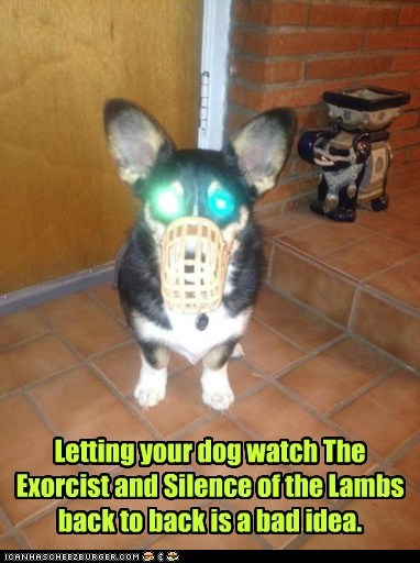 horror film,dogs,lazer eyes,corgi,exorcist,silence of the lambs