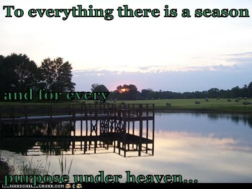 To everything there is a season and for every  purpose under heaven...