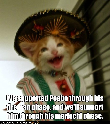 mexico,mariachi,phase,support,family,Cats,captions