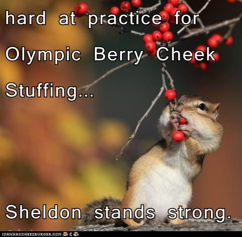 hard at practice for Olympic Berry Cheek Stuffing...    Sheldon stands strong.