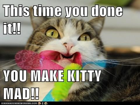 This time you done it!!  YOU MAKE KITTY MAD!!