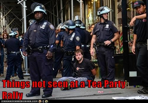 Things not seen at a Tea Party Rally