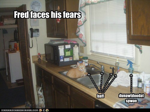 Fred faces his fears