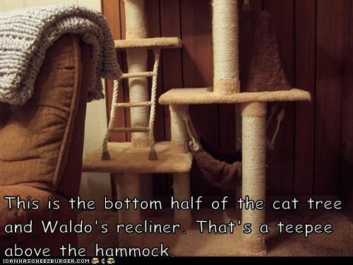 This is the bottom half of the cat tree and Waldo's recliner. That's a teepee above the hammock.
