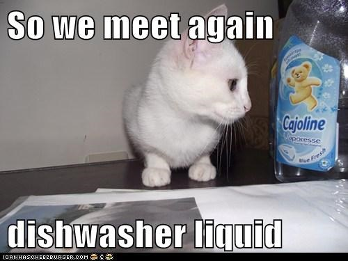 So we meet again  dishwasher liquid