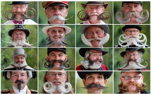 The Daily What: Beard And Moustache Championship Contestants of the Day