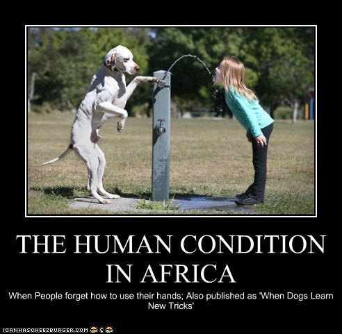 THE HUMAN CONDITION IN AFRICA