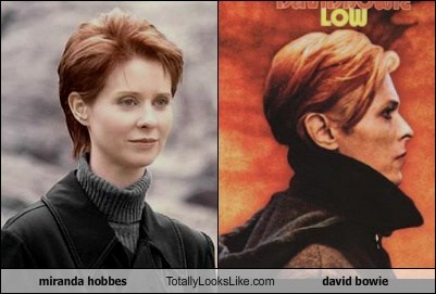 Totally Looks Like: Cynthia Nixon (Miranda Hobbes from SATC) Totally Looks Like David Bowie