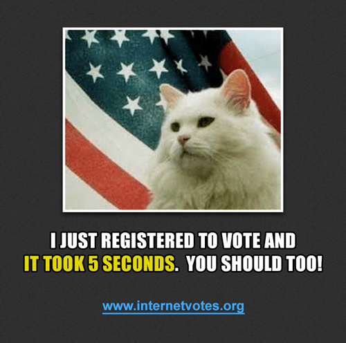 Internet Voter Registration Day of the Day