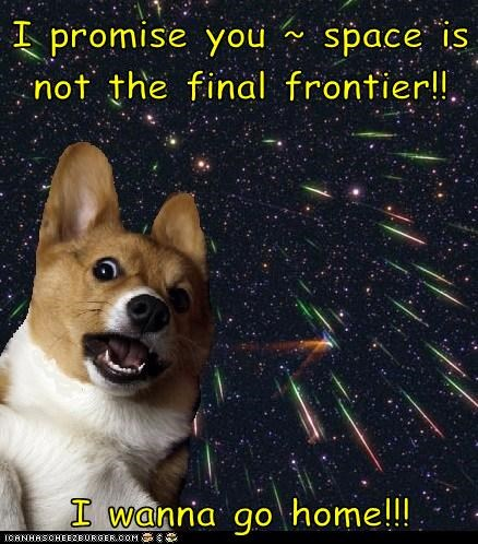 I promise you ~ space is not the final frontier!!  I wanna go home!!!
