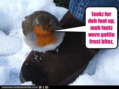 fankz fur deh foot up, meh feetz were gettin frost bitez,
