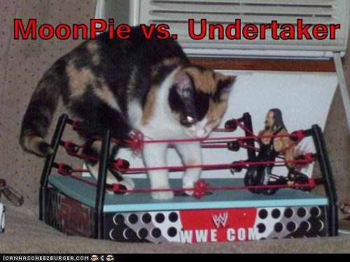 MoonPie vs. Undertaker
