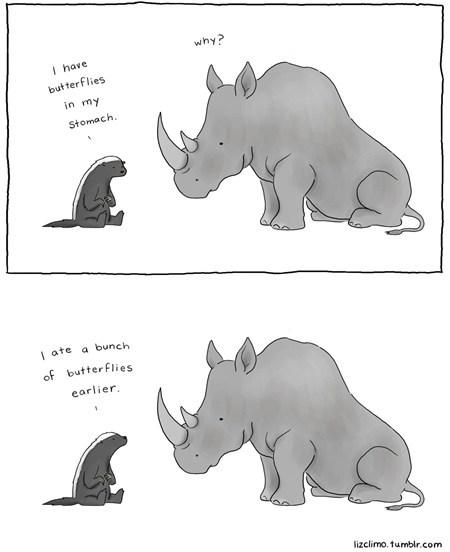 animals,butterflies,cute,eating,love,rhino,stomach
