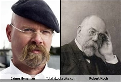 Jamie Hyneman Totally Looks Like Robert Koch