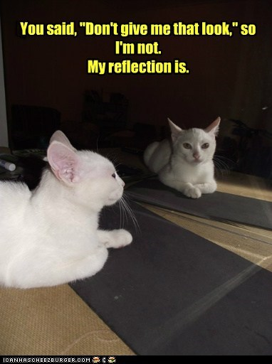 Your reflection can tell my reflection to quit it.