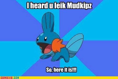 I heard u leik Mudkipz