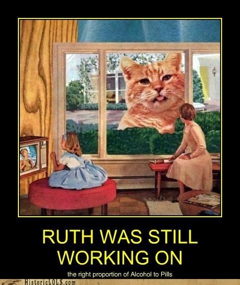 cat,giant,window,pills,booze