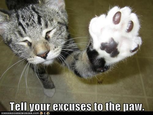 Tell your excuses to the paw.