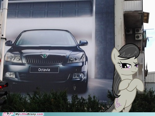 Octavia's New Car