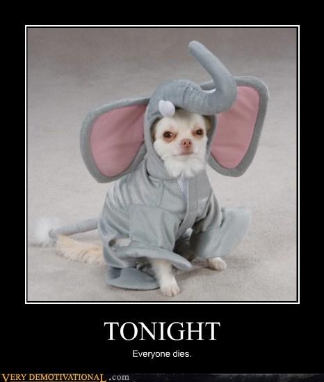 costume,dogs,elephant,mad,poor bastard