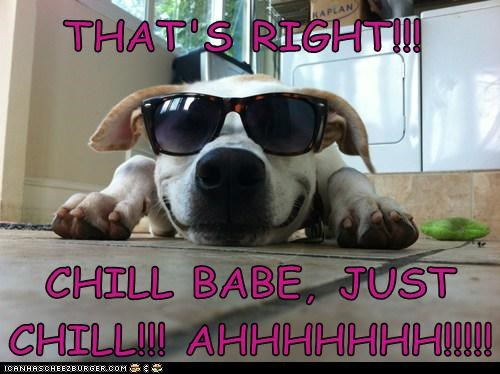 THAT'S RIGHT!!!    CHILL BABE, JUST CHILL!!! AHHHHHHH!!!!!
