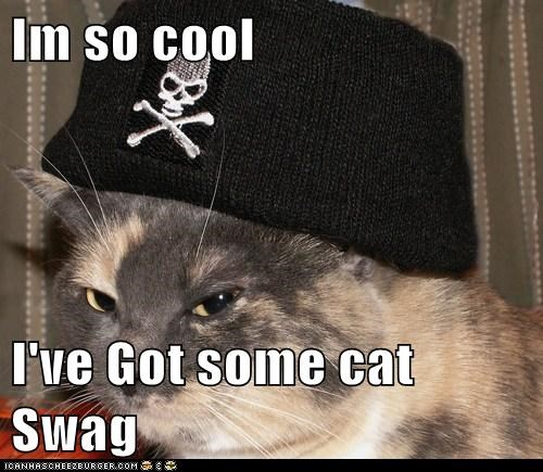 Im so cool  I've Got some cat Swag