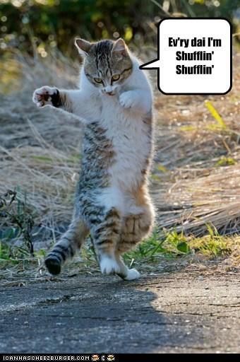 OH YEH! I'z da PARTEE RAWKIN' ANIMUL!!