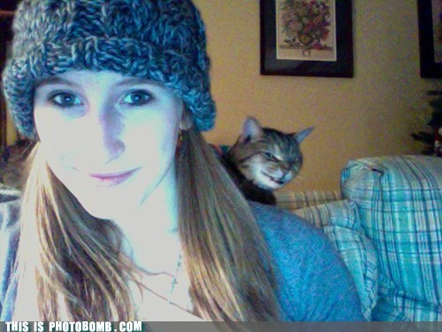 Photobomb Level: Cat!
