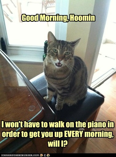 I won't have to walk on the piano in order to get you up EVERY morning, will I?