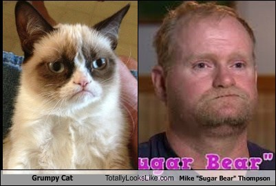 "Totally Looks Like: Grumpy Cat Totally Looks Like Mike ""Sugar Bear"" Thompson"