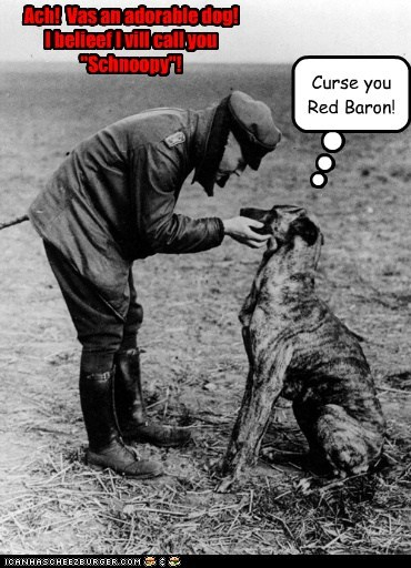 dogs,man,snoopy,red baron,ww1