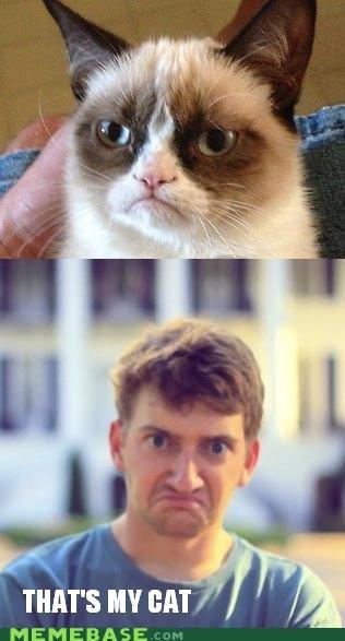 Face Cat?