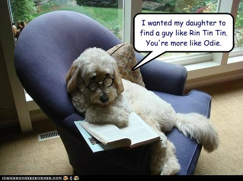 dogs,judgement,glasses,dad,book,what breed,odie