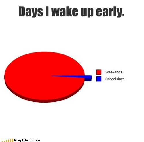Pie Chart,school,sleep,weekends,Y U NO