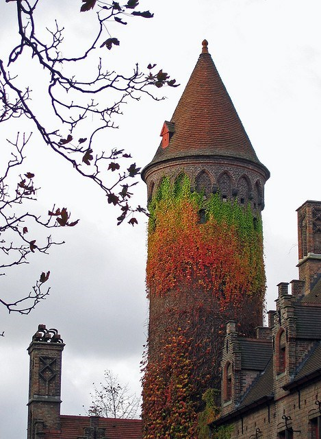 Destination WIN!: Ivy Tower in Bruges, Belgium Living Up To Its Name