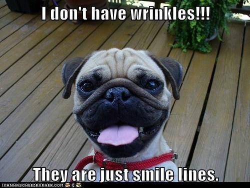 I don't have wrinkles!!!  They are just smile lines.