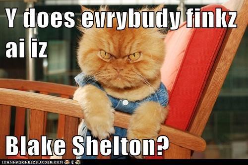 Y does evrybudy finkz ai iz  Blake Shelton?