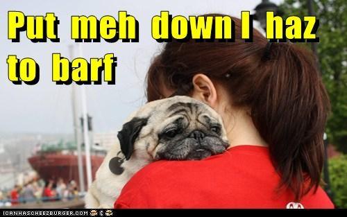 Put  meh  down I  haz  to  barf